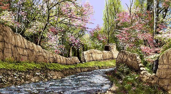 جوی آب در بهار روستا پر ابریشم