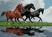 دویدن اسبها