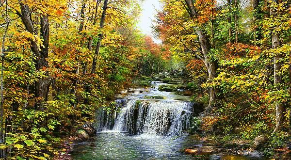 آبشار دلربا