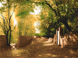 طبیعت باصفا کوچه روستا