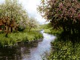 منظره زیبای رود