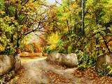 باغهای پاییزی زیبا