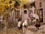 زندگی در روستا