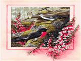 پرندگان در جنگل