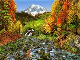 منظره جنگل پاییزی و رود