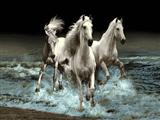 اسب رویا