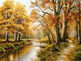 پاییز جنگل 2