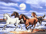 اسب ها