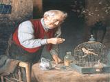 پیرمرد و پرنده باز