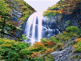 آبشار بلند