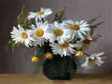 گلدان گل سفید بابونه