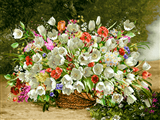سبد گلهای سفید