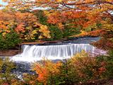 آبشار جنگل پاییزی
