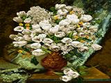 گلدان گلهای سفید لاله