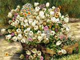 سبد گلهای لاله سفید