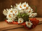 سبد گل سفید مینا
