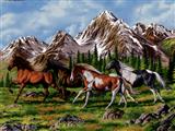 دویدن اسب ها در کوهستان