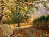 جاده روستایی